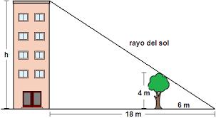 [list=1][*]¿Qué cumplen los lados de dos triángulos semejantes?[/*][*]Calcula la altura del edificio con los datos que aparecen en el dibujo.[/*][/list]
