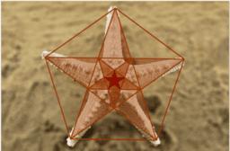 Esplorazioni matematiche con GeoGebra II