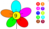 Flor y color-1