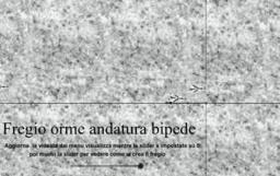 impronte di bipede (timbro e fregio p1g1)