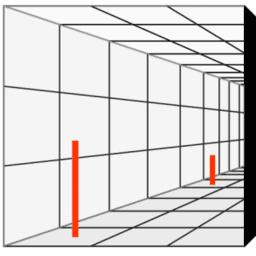 La percepción y la necesidad de medir