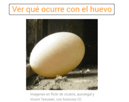 Probabilidad de que un huevo llegue a eclosionar