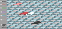 Juego sardinas reto 14