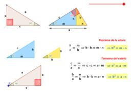 Teorema de la altura y teorema del cateto.