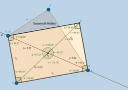 Rectangle - Savannah Hubbs