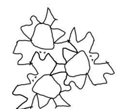 Ana Rotation Tessellation
