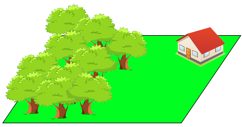 Il bosco e la casa occupano una parte dello spazio (il prato in verde)