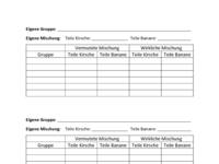 Arbeitsblatt KiBa für Schüler.pdf