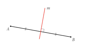 Wat is de naam voor deze rode rechte?