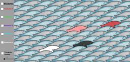 Juego sardinas reto 13