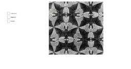 Investigating Escher's angel tesselation