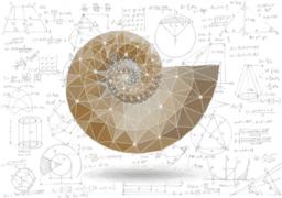 My math 2 portfolio