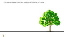 calcul de la hauteur d'un arbre