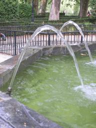 Wasserfontänen und Parabolspiegel