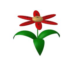 Copy of Kwiatek dla KWN