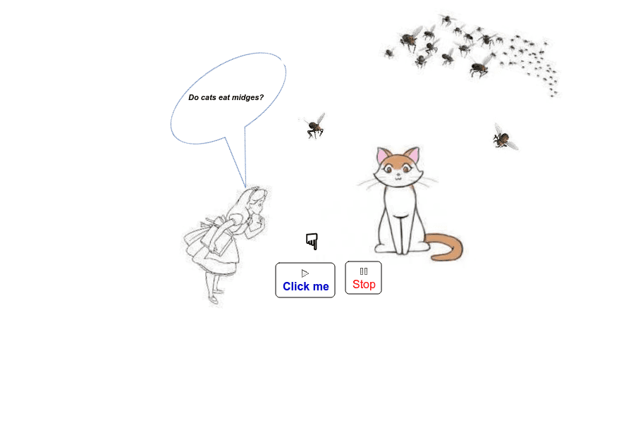 cats and gnats