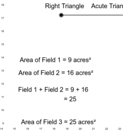 Copy of Pythagorean Theorem - Right vs Acute vs Obtuse Triangles