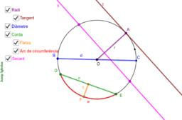 CIRCUMFERÈNCIA - Parts, angles i construcció.