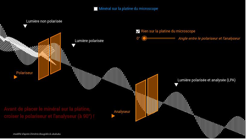 Faites varier les paramètres de la modélisation pour observer les conséquences sur la lumière en sortie du dispositif
