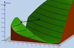 Copie de Lignes de niveau : le pont