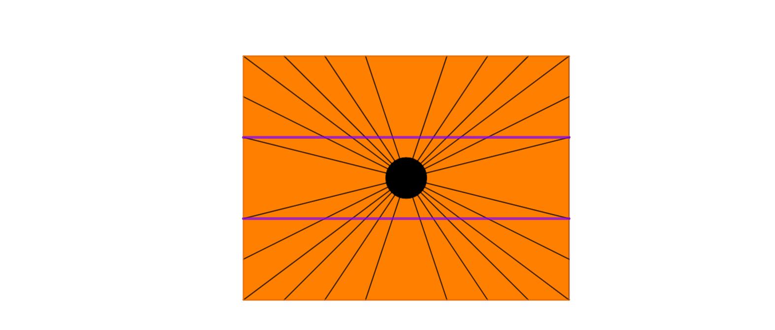 Linee curve o rette?