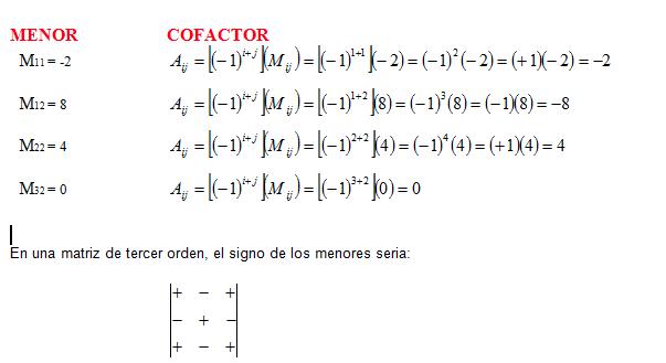 Menor y Cofactor