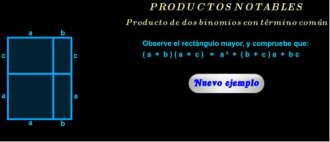 """Visión geométrica ( haga click en """"Nuevo ejemplo"""" )."""
