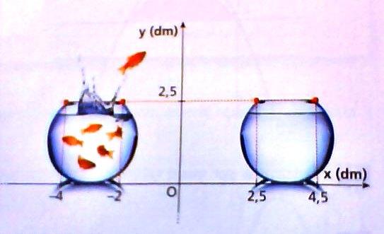 Un salto pericoloso (tratto da Zanichelli Coniche e trasformazioni nel piano - Bergamini - Barozzi - Trifone)