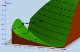 Lignes de niveau : le pont