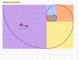 Fibonacci Numbers and the Golden Spiral