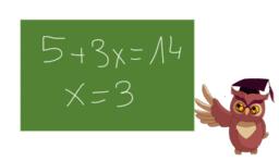 Terme und Variablen verstehen