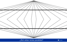 ILUSIÓN PERCEPTIVA 7 (Ilusión de Hering)