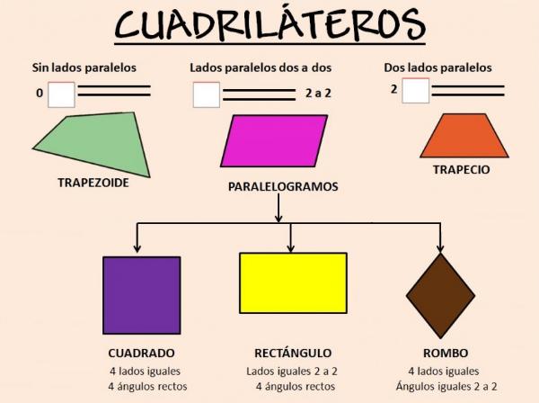 Clases de paralelogramos