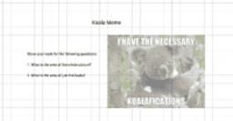 koala_meme