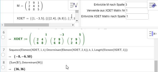 Deternimanten-Entwicklung 3x3 Matrix