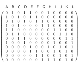 connectivity matrix
