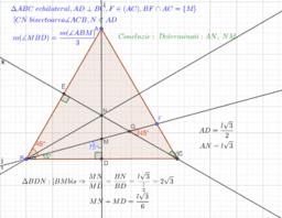 Problema triunghi echilateral -relatii metrice