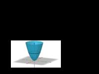 Geodätische von Funktionsgraphen.pdf