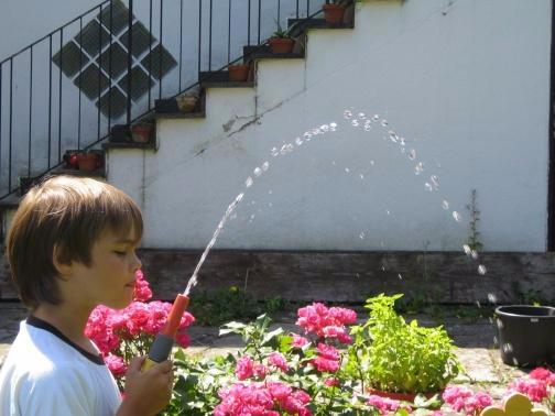 Wasser aus einem Gartenschlauch