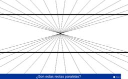 ILUSIÓN PERCEPTIVA 6 (Ilusión de Hering)
