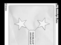 FourRoles of Government.pdf