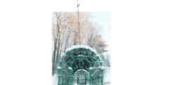 Симметрия колонны