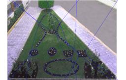 Jardín de conicas 1