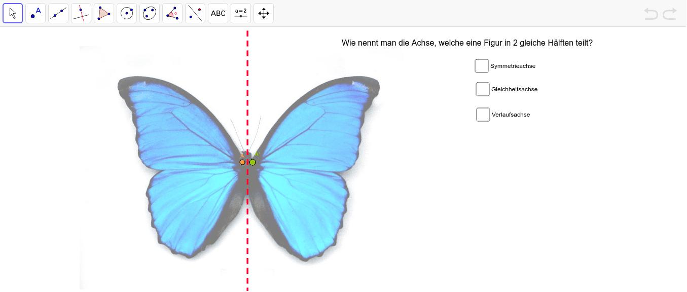 Ziehe den Punkt A entlang des Umrisses des Schmetterlings. Was fällt dir auf? Beantworte zusätzlich die Frage und kreuze die richtige Antwort an. Press Enter to start activity