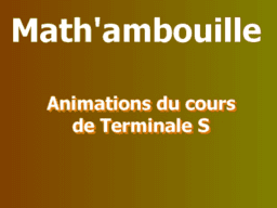 Mathambouille : Animations du cours de Terminale S