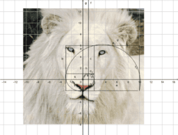 Golden Ratio In Physical Apparience.