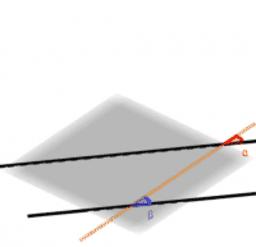 평행한 직선과 일치하는 직선을 3차원에서 관찰하기