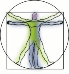 Transformations de figures planes