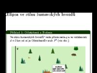 Bozena.pdf