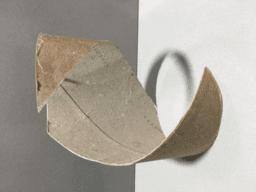 El rotlle de paper higiènic
